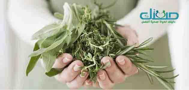 الأعشاب التي تساعد على النوم